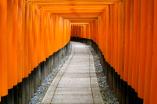 fushimi inari in kyoto